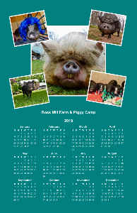 Ross Mill Farm & Piggy Camp 2019 Poster Calendar