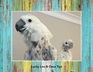 Lucky Lou & Coco Too Calendars