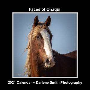 Faces of Onaqui ~2021 Calendar
