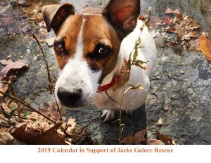 Jacks Galore 2018 Calendar