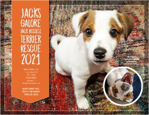 Jacks Galore 2021 Fundraiser Calendar