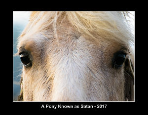 A Pony Known as Satan 2017 Calendar