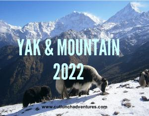 2021 Yak and Mountain Wall Calendar 8.5x11