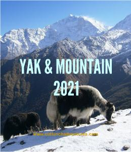 2021 Yak and Mountain CD Calendar