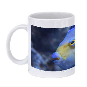 Blue and Yellow Fish Mug