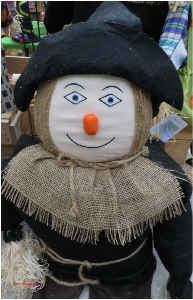 Black Hat Scarecrow