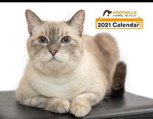 Foothills Animal Rescue 2021 Calendar
