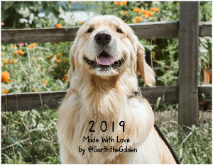 Garth the Golden 2019 Calendar