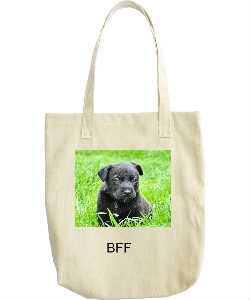 Black Pug Tote Bag Best Friends Forever