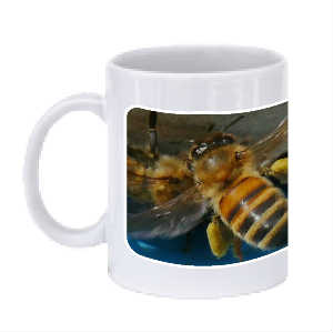 Adoptabee Coffee Mug 1