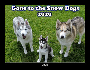 2020 Gone to the Snow Dogs Wall Calendar