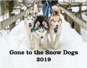Gone to the Snow Dogs Calendar | Siberian Husky