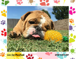 Gus the Meatball 2018 Calendar