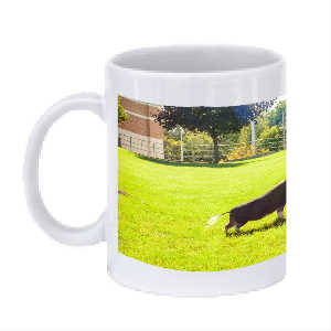 Cops and Paws Howie Mug