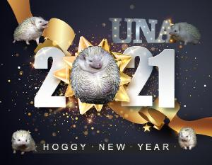 Una Hedgehog - 2021