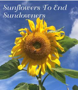 Sunflower's to End Sundowners CD Calendar