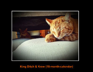 King Ditch & Krew (18-month-calendar)