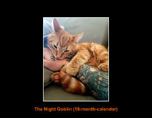 The Night Goblin (18-month-calendar)