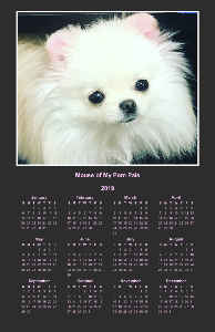 Mouse of My Pom Pals Poster Calendar 2019