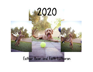 Esther Bean 2020 Calendar