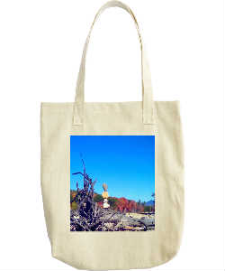 Roots Tote