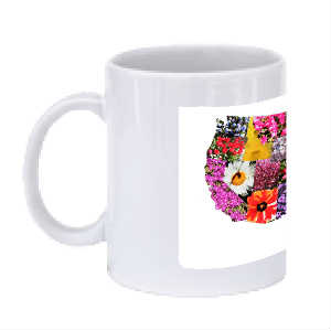 A cup of Flowers with white background