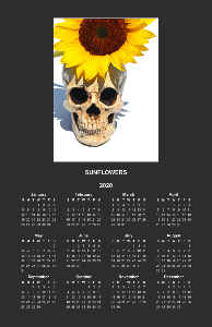 SKULL & SUNFLOWER 2019 JONATHAN BROOKS