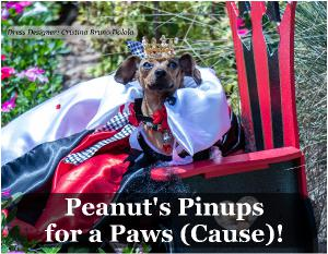 Peanut's Pinups for a Paws