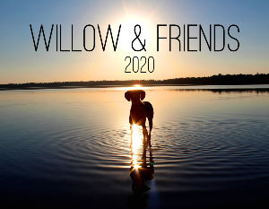 Willow & Friends