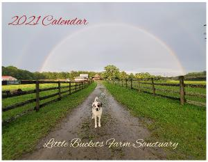 2021 Wall Calendar -Little Buckets Farm Sanctuary