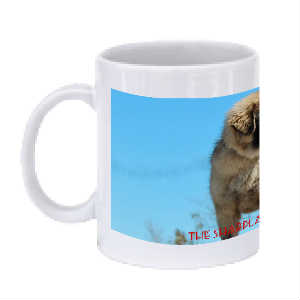 Sharplaninatz Dogs Of Shara Kennel Coffee Mug