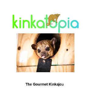 The Gourmet Kinkajou Recipe Book
