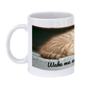 """Wake Me Up When the Coffee is Ready"" Kitten Mug"