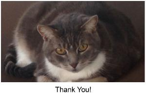 Tipper Thank You Card