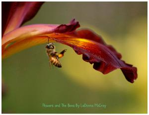 Flowers and The Bee's By LaDonna McCray