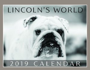 Lincoln's World 2019 Calendar