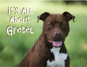 It's All About Gretel