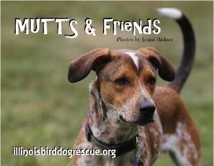 MUTTS & Friends 2018