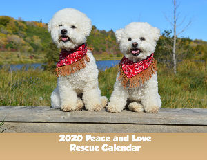 2020 Peace and Love Rescue Calendar