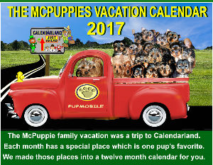 THE MCPUPPIE VACATION TO CALENDARLAND