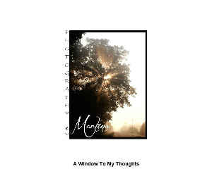 A WINDOW TO MY THOUGHTS