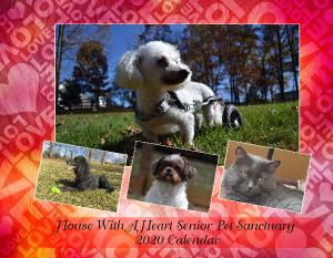 House with a Heart Senior Pet Sanctuary 2020