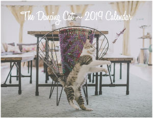 The Dancing Cat - 2019 Calendar