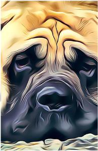 Melting Mastiff Notebook