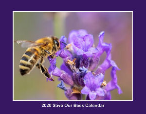 2020 Save Our Bees Calendar