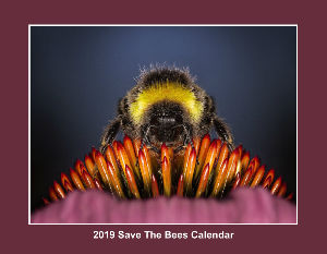 2019 Save The Bees Calendar