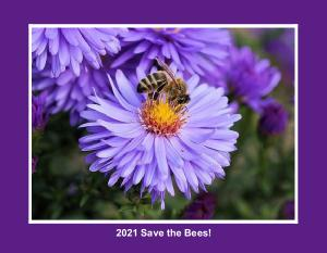 2021 Save the Bees!