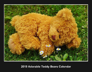 2018 Adorable Teddy Bears Calendar