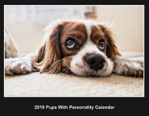 2019 Pups With Personality Calendar