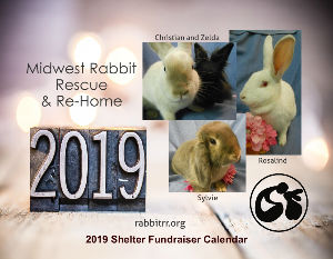 2019 Midwest Rabbit Rescue & Re-Home Calendar
